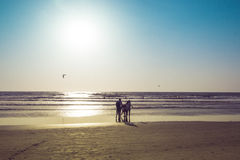 People in a sea on a sunset, Arambol beach, Goa, India. Paraglid Stock Photo