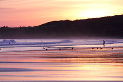 People and seagulls in wonderful summer scenery on atlantic ocean in sunrise on a sandy beach of hendaye Stock Photography