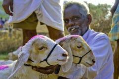 Indian rural market Royalty Free Stock Photo