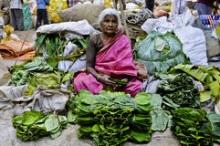 An Old woman greengrocer Stock Images