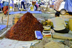 red chilli in indian rural market Royalty Free Stock Photo