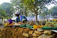 Indian rural market Royalty Free Stock Image