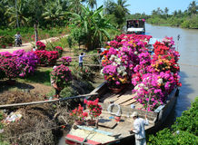 People selling flowers on the boat in Mekong Delta, Vietnam royalty free stock photos