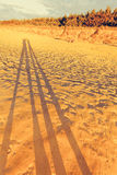People shadows on sand beach. Two people shadows walking on sandy beach in evening sunset light Royalty Free Stock Images