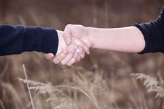 People shaking hands Royalty Free Stock Images