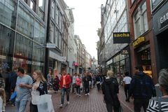 Busy streets of Amsterdam Royalty Free Stock Images