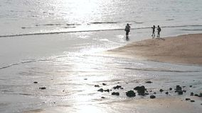 People on shore at low tide.  stock footage