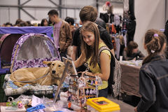 People at the show distribution of stray animals Stock Photo