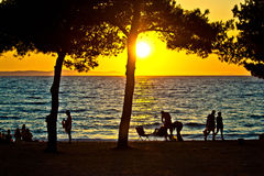 People silhouette on beach at sunset. Under pine tree Stock Photos