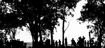 People silhouette in color black and white isolate Royalty Free Stock Image
