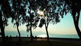 People Silhouette in the Sunset. Near the seaside stock footage
