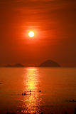 People silhouettes swim in sea against sun in red sky at sunrise Stock Photography