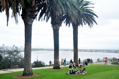 Australian people sit relax and picnic in Kings Park and Botanic garden royalty free stock photography