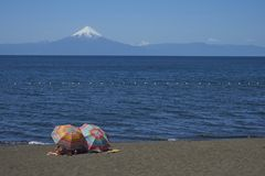 Summer in the Lake District of southern Chile royalty free stock image