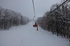 People skiing. Having fun. Great stock photography