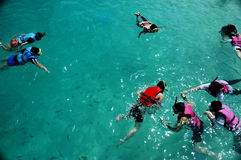 People snorkeling. Group of people snorkeling - top view Royalty Free Stock Photography