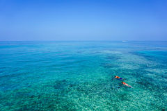 People Snorkeling in Crystla Blue Water Stock Photos