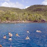 People Snorkeling square. Large group of people with snorkel and some snorkeling in a blue quiet bay under jungle bluffs near Marigot Bay st Lucia in the West stock photography