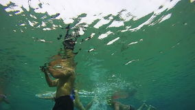 People Snorkeling Underwater in the Red Sea, Egypt stock video footage