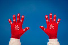 People Snow Winter Stock Images