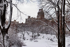 People in snowy Central Park, New York. People enjoy the snow in Central Park, Manhattan, New York Stock Photography