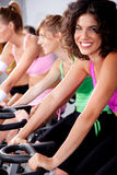 People spinning on bicycles in a gym Stock Image