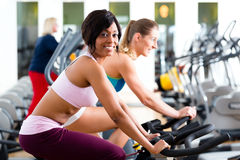 People Spinning in the gym on bicycles Royalty Free Stock Photo