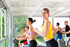People in sport gym on treadmill running Stock Image