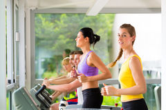 People in sport gym on treadmill running Stock Images