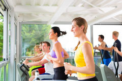 People in sport gym on treadmill running Stock Photos