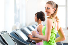 People in sport gym on treadmill running Stock Photo