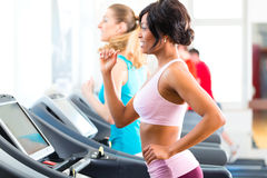 People in sport gym on treadmill running Royalty Free Stock Images