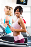People in sport gym on treadmill running Stock Photography