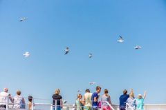 People stand on the ferry and watch the seagulls  blue sky background Stock Images