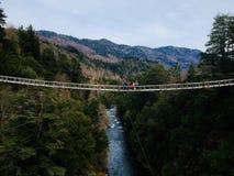 People Standing on Bridge Royalty Free Stock Photo