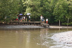 People standing on the bridge wait the boat for travelling Stock Photography