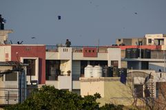 People standing on rooftops and flying paper kites on makar sank. Jaipur, India - 14th Jan 2018: People standing on rooftops and flying paper kites on Makar Royalty Free Stock Photography
