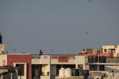 People standing on rooftops and flying paper kites on makar sank. Jaipur, India - 14th Jan 2018: People standing on rooftops and flying paper kites on Makar Stock Photos