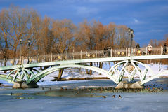 People stay on the bridge and look at a frozen pond and birds. Stock Photo