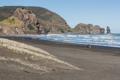 People strolling on Piha beach Stock Image