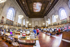People study in the New York Public Royalty Free Stock Image