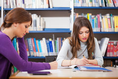 People studying in a library Stock Photos