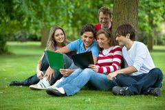 People studying outdoors Stock Photography