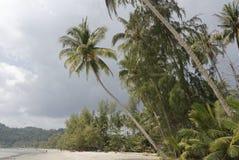 People sunbathe and swim at the beach paradise of coconut islan. Ko Kut,Thailand- February 25,2018: People sunbathe and swim at the beach paradise of coconut Royalty Free Stock Photos