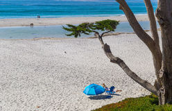 People sunbathing at beach in Carmel-by-the-Sea, California Royalty Free Stock Photo