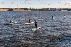 People on sup boards. summer water activities royalty free stock photos