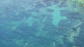 People swim in the sea aerial view