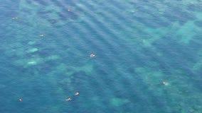 People swim in the sea summer season vacation