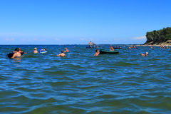 People swim on shoal in the Baltic Sea Stock Photography
