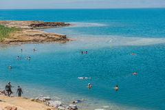 People swimming bathing in dead sea jordan Stock Images